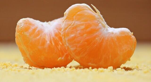 cats and orange peels