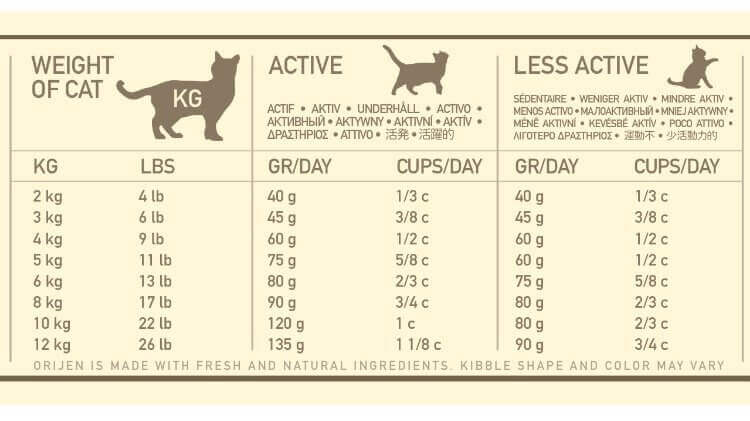 how much to feed a cat chart